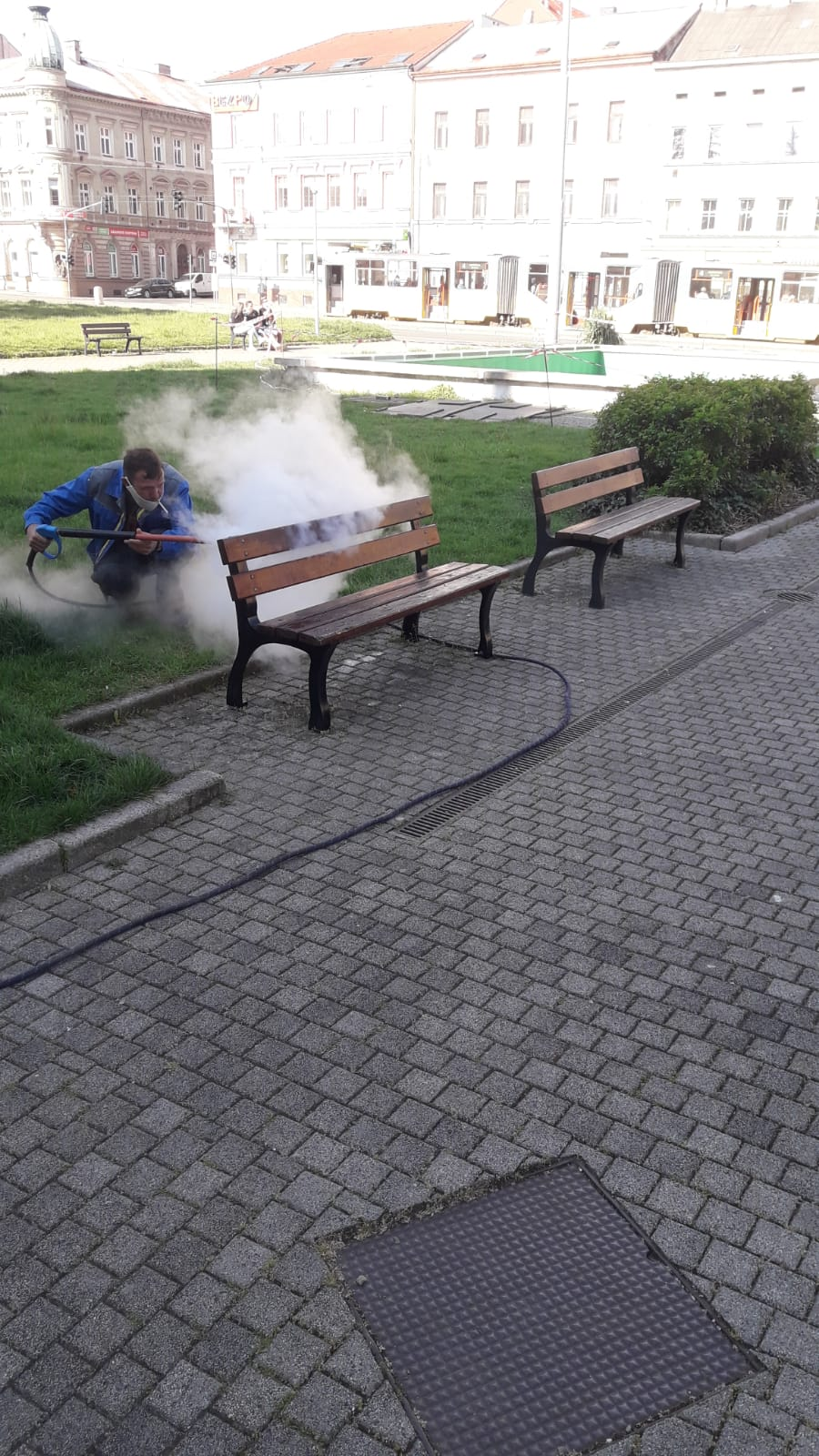 Mytí laviček v Plzni